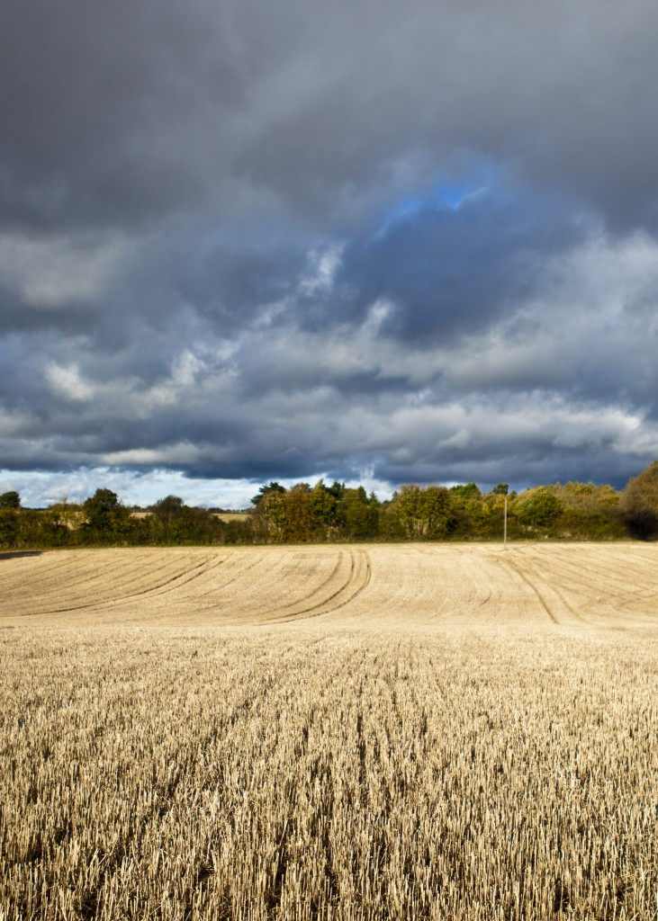 Autumnal skies over the farm